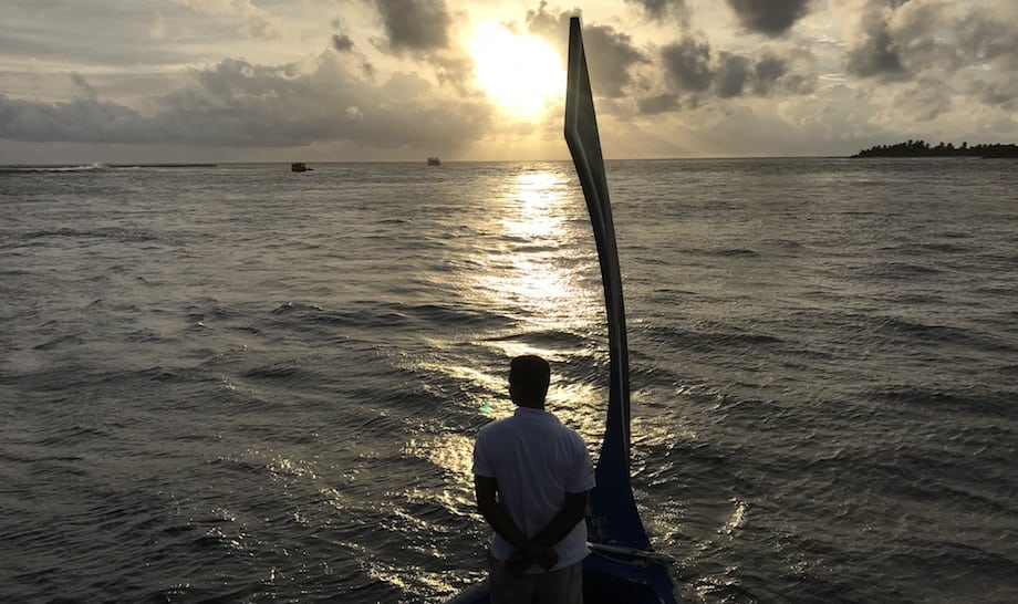 Activities at The Residence Maldives: dolphin spotting at sunset.