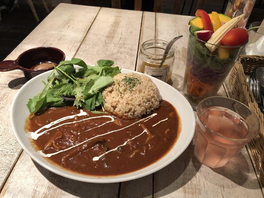 Vegan Vegetarian restaurants in Tokyo Ain Soph.Journey