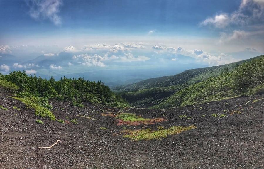 climbing Mount Fuji vegetation