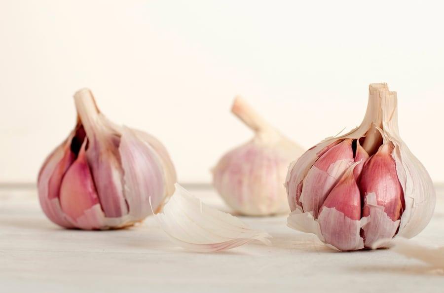 avocado toast recipes garlic