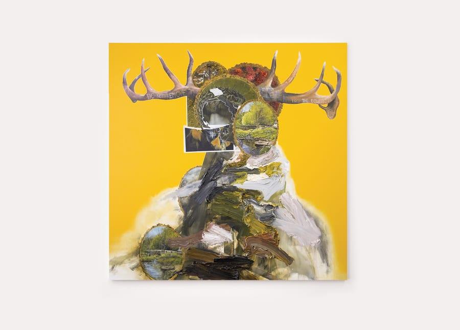 David Kim Whittaker Exhibition