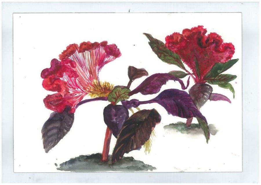 François Olislaeger Exhibition - Une fleur par jour project: A botanical therapy