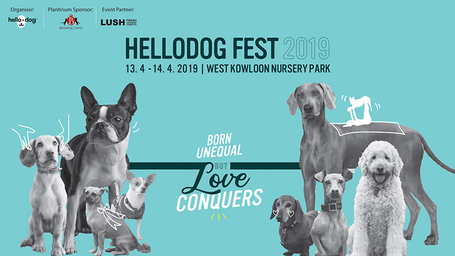 Toe - Our Latest Number Asia World Tour hellodog fest 2019