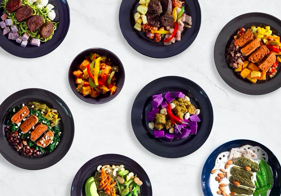 Biorna Quantics healthy meal delivery services in Hong Kong