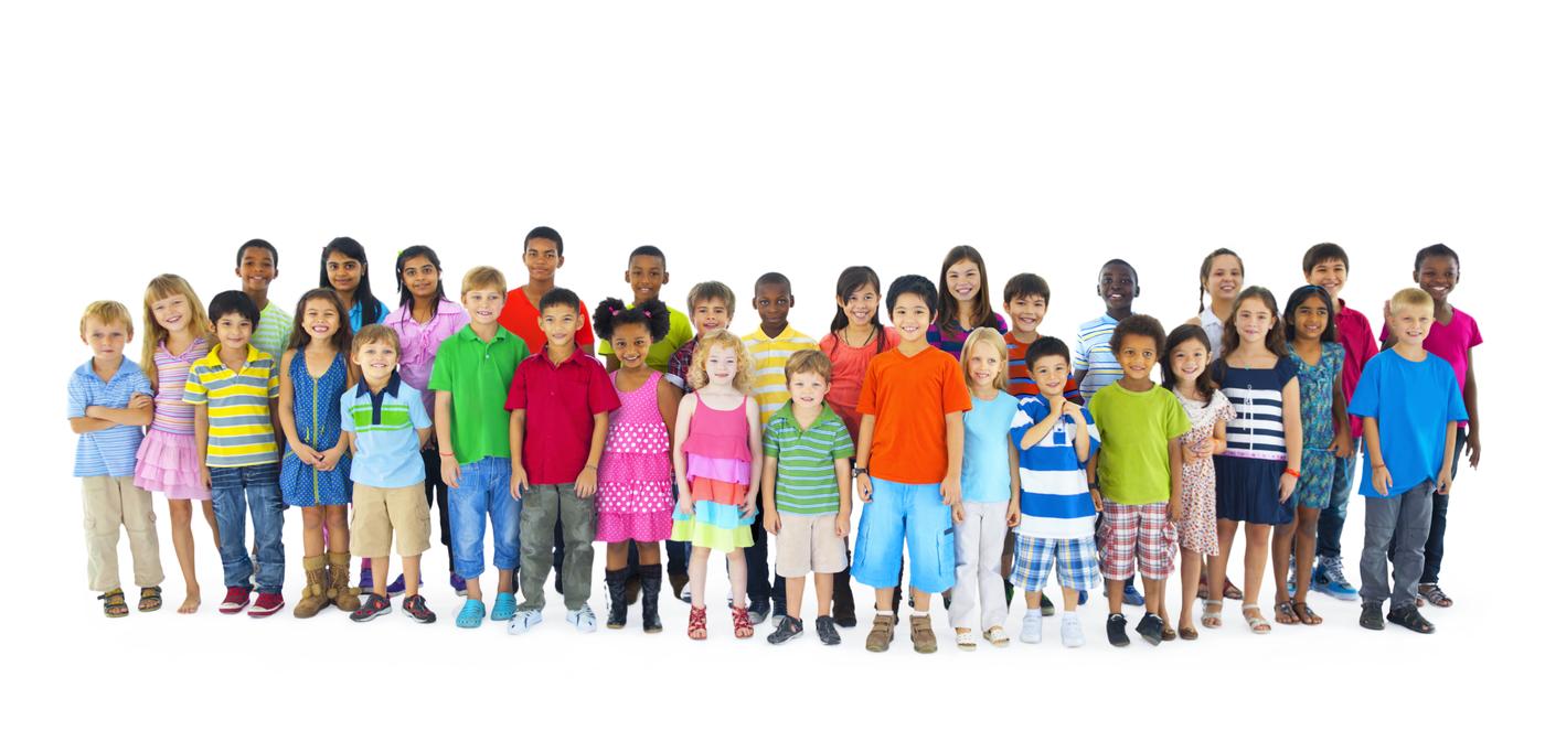 BDRC international school survey