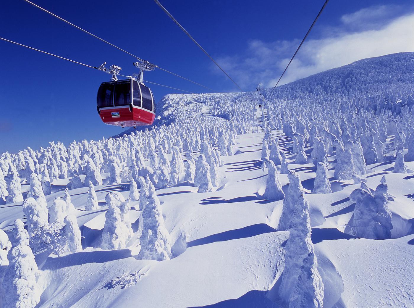 Yamagata ice trees HIS travel