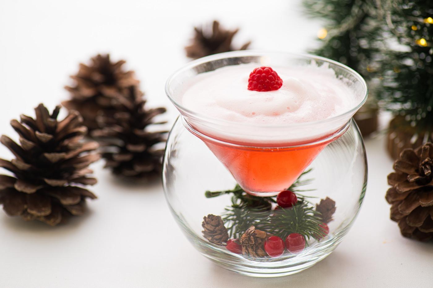 Winter Berry Cocktail Gradini