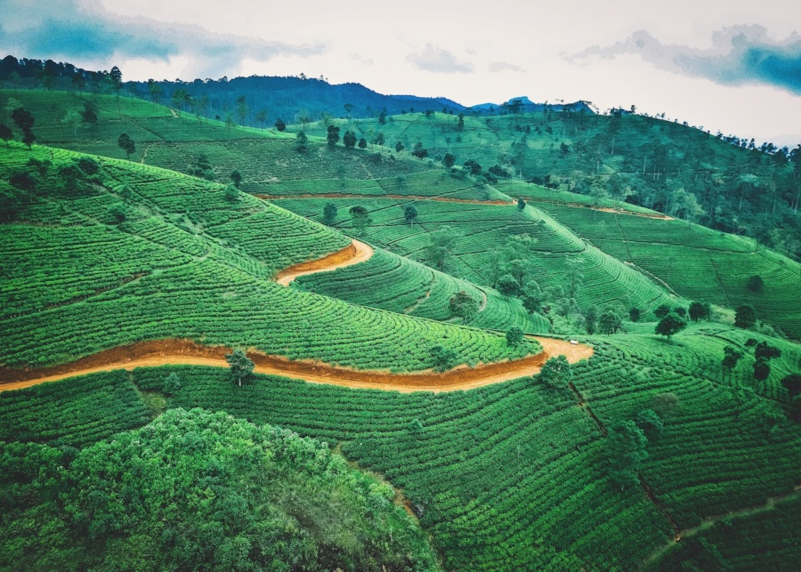 The off-the-beaten-path guide to Sri Lanka: five lesser-known spots to visit